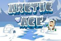Arctic Ace ™ Game Info