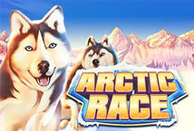 Arctic Race ™ Game Info