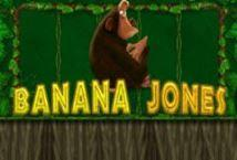 Banana Jones ™ Game Info