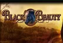 Black Beauty ™ Game Info