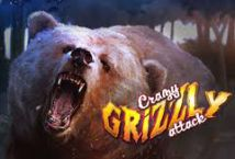 Crazy Grizzly Attack ™ Game Info