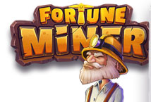 Fortune Miner ™ Game Info