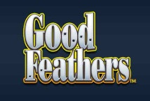 Goodfeathers ™ Game Info