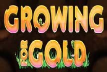 Growing For Gold ™ Game Info