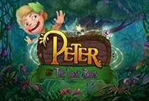 Peter and The Lost Boys ™ Game Info