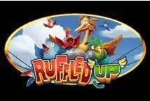Ruffled Up ™ Game Info