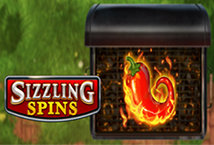 Sizzling Spins ™ Game Info