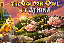 The Golden Owl of At… ™ Game Info