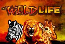 The Wild Life ™ Game Info