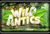 Wild Antics ™ Game Info