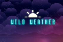 Wild Weather ™ Game Info