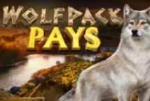 Wolfpack Pays ™ Game Info