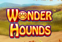 Wonder Hounds ™ Game Info