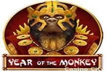 Year of the Monkey ™ Game Info